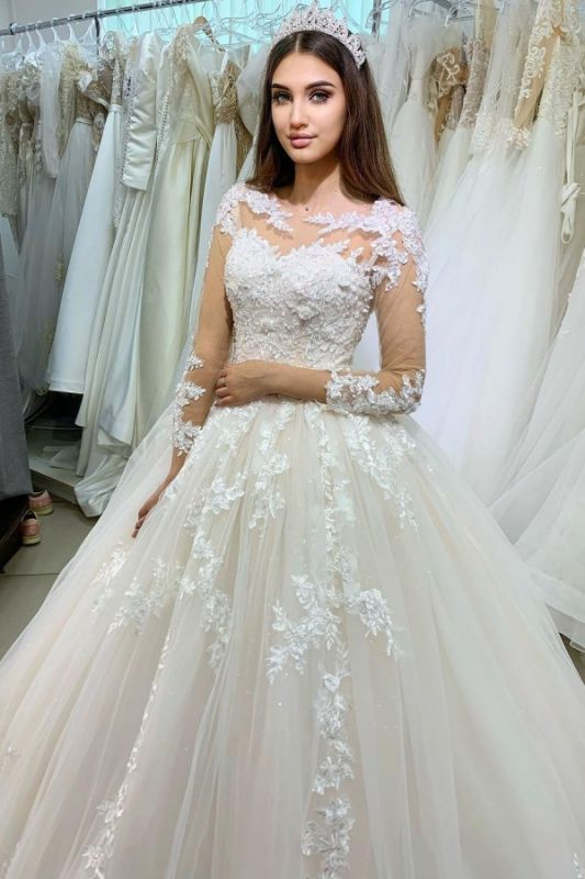 Princess Long Sleeves Tulle Wedding Dress with Appliques On Sale