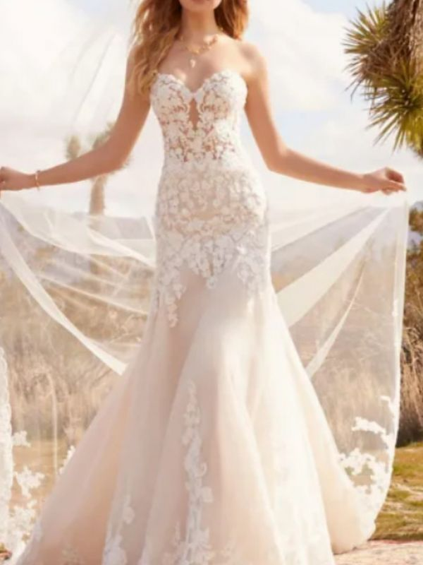 Formal A-Line Wedding Dress Sweetheart Tulle Strapless Plus Size Bridal Gowns with Court Train