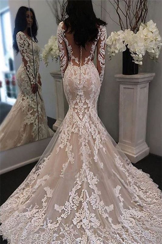 Illusion Long Sleeve Bride Dress Mermaid Lace Gorgeous Retro Sheer Tulle 2020 Wedding Dress BA6189