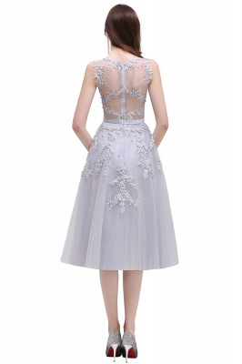 Women's Sheer Neck Lace Appliques Short Prom Homecoming Dress On Sale_12