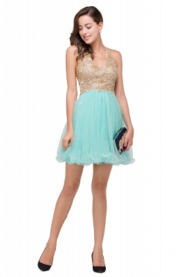 Short Tulle A-line V-Neck Appliques Sleeveless Prom Dress On Sale_9