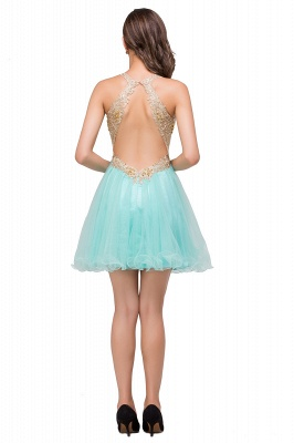 Short Tulle A-line V-Neck Appliques Sleeveless Prom Dress On Sale_6