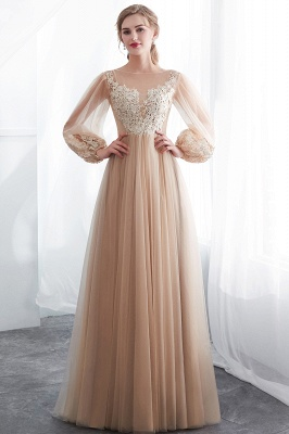 Gorgeous Long Sleeve Tulle Prom Dress | Long Evening Party Gowns With Appliques_5