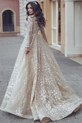 Elegant Long Sleeve V-Neck Wedding Dress Long Bridal Gowns With Lace Appliques_3