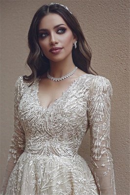 Elegant Long Sleeve V-Neck Wedding Dress Long Bridal Gowns With Lace Appliques_2