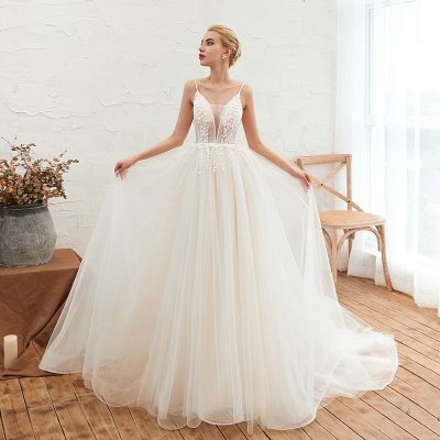 Chic Spaghetti Straps V-Neck Ivory Tulle Wedding Dress with Appliques_5