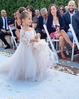 Princess Lace Tulle Flower Girl Dress With Sleeves On Sale_3