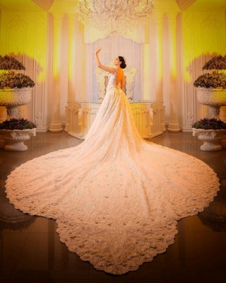 Luxury Chapel Train White Mermaid Wedding Dress With Lace Appliques_2
