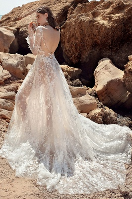 Gauzy Long Sleeves Tulle V Neck Wedding Dresses With Lace Appliques_7
