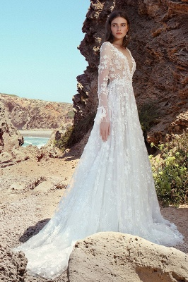 Gauzy Long Sleeves Tulle V Neck Wedding Dresses With Lace Appliques_8