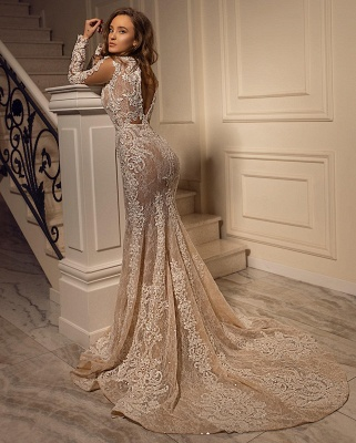 Sexy Mermaid Tulle Lace Long Sleeves Wedding Dress On Sale_2