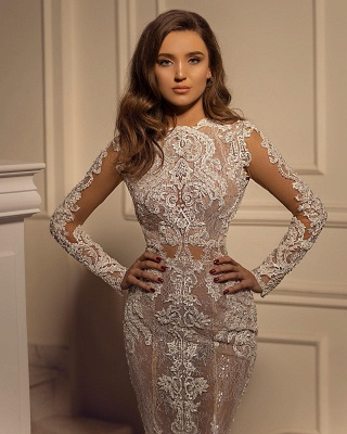 Sexy Mermaid Tulle Lace Long Sleeves Wedding Dress On Sale_3