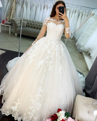 Princess Long Sleeves Tulle Wedding Dress with Appliques On Sale_3