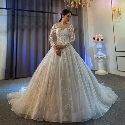 Ball Gown Long Sleeves Tulle Lace Wedding Dress On Sale_2