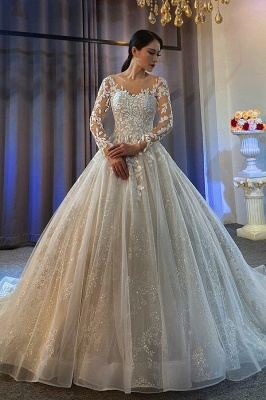 Ball Gown Long Sleeves Tulle Lace Wedding Dress On Sale_1