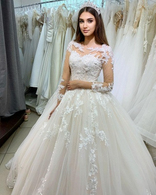 Princess Long Sleeves Tulle Wedding Dress with Appliques On Sale_2