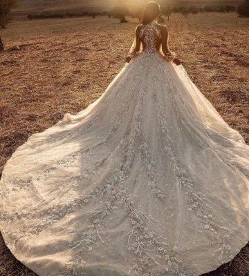 Luxury Ball Gown High-Neck Tulle Lace Long Sleeves Wedding Dress Online_3