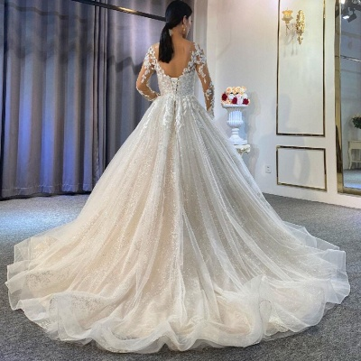 Ball Gown Long Sleeves Tulle Lace Wedding Dress On Sale_3