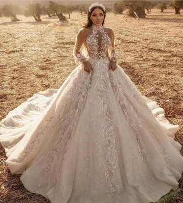 Luxury Ball Gown High-Neck Tulle Lace Long Sleeves Wedding Dress Online_2