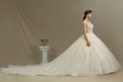 Gorgeous Short Sleeves Lace Wedding Dresses A-Line_6