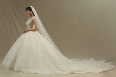 Gorgeous Short Sleeves Lace Wedding Dresses A-Line_2