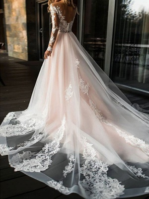 Gorgeous V Neck Backless Tulle Long Lace Wedding Dresses With Long Sleeves_2