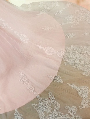 Gorgeous V Neck Backless Tulle Long Lace Wedding Dresses With Long Sleeves_7
