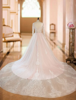 Gorgeous V Neck Backless Tulle Long Lace Wedding Dresses With Long Sleeves_4