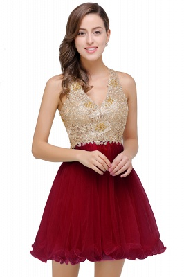 Short Tulle A-line V-Neck Appliques Sleeveless Prom Dress On Sale_1