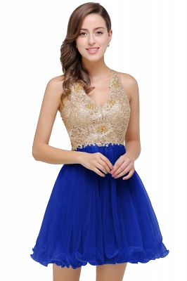 Short Tulle A-line V-Neck Appliques Sleeveless Prom Dress On Sale_2