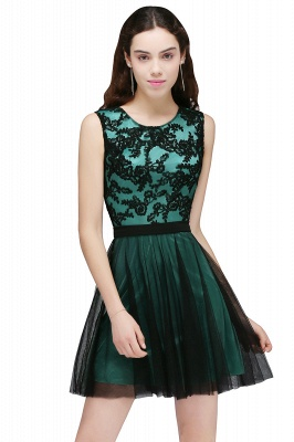 Short Lace Appliques Tulle Sleeveless Prom Dress On Sale_3
