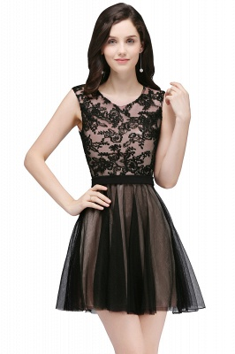 Short Lace Appliques Tulle Sleeveless Prom Dress On Sale_2