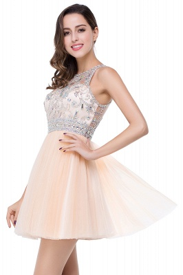 Simple Crew Beading Sleeveless Tulle Short Prom Dress On Sale_6