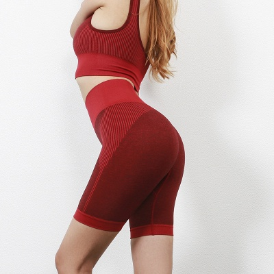Yoga Clothing Suit High Waist Fitness Shorts Female Yoga Vest Sports Tights Shorts_6