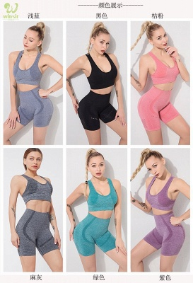 Two Piece Sport Suit Women Yoga Set Gym High Waist Tight Elastic Vest Shorts_3