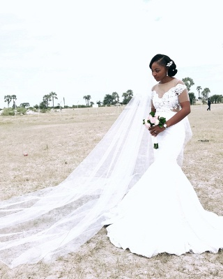 Afric Style Short Sleeves Wedding Dress Fit And Flare Mermaid Applique Bridal Gowns