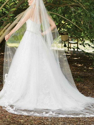 Sexy A-Line Wedding Dress Sweetheart Lace Sleeveless Bridal Gowns in Color Court Train_4