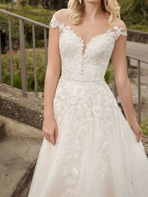 A-Line Wedding Dresses V-Neck Lace Tulle Short Sleeve Bridal Gowns Country Plus Size Court Train_2