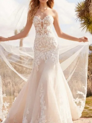 Formal A-Line Wedding Dress Sweetheart Tulle Strapless Plus Size Bridal Gowns with Court Train_1