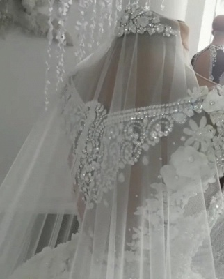 2020 Luxury Sleeveless Crystal Wedding Dresses | Sheer Tulle Flowers Bridal Gowns with Beading BC0708_4