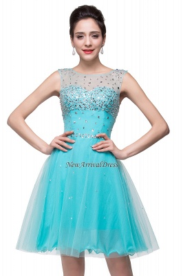 Open Back Sleeveless Chiffon Homecoming Dress Crystal Beads Tulle Short Prom Dress On Sale_6