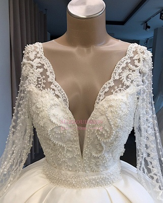 V-neck Amazing Ball-Gown Long-Sleeves Appliques Wedding Dresses_2