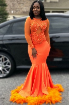 Feather Mermaid Orange Prom Dresses Cheap 2020 | Long Sleeve Sparkle Appliques Evening Gowns_1