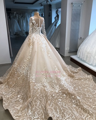 Appliques Ball-Gown Long-Sleeves Scoop Brilliant Wedding Dresses_2