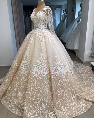 Appliques Ball-Gown Long-Sleeves Scoop Brilliant Wedding Dresses_3