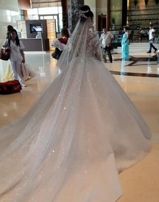 Unique Ball Gown Wedding Dress Long sleeves Royal White Bridal Gowns On Sale_3
