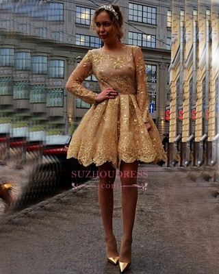 Gold Lace Appliques Long Sleeves Party Gowns Cheap Short 2020 Homecoming Dresses BA7971_1