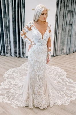Mermaid Delicate Appliques Wedding Dresses cheap | V-neck Sheer Tulle Long Sleeve Bridal Gowns_1