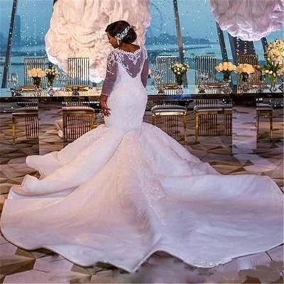 Plus Size Mermaid Lace Wedding Dresses | 2020 Sexy Wedding Dress with Sleeves_3