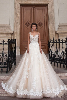 2020 A-line Light Champagne Wedding Dresses Lace Sheer Tulle Stunning Bridal Gowns BA3192_4